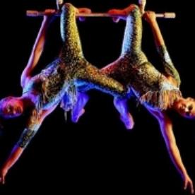 Cirque du Soliel-Alegria, Sacramento. Events in Northern California
