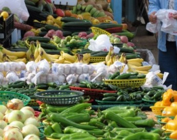 Northern California Farmers Markets