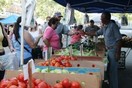 Lodi Farmers Market, Northern California Event