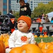 pumpkins in the park san jose